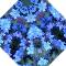 Teeny blue flowers