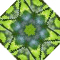 Leaves & lattice